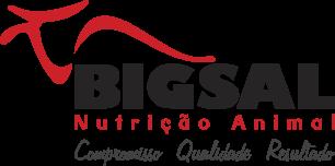 logo-bigsal-topo-mobile