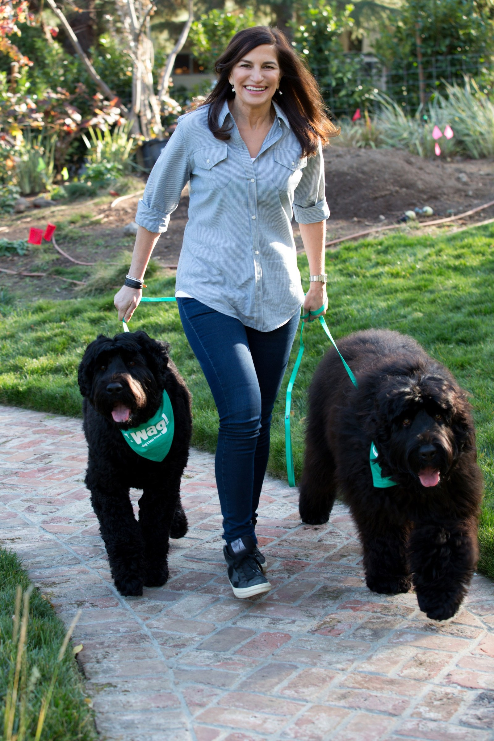 Walks For Dog Owners