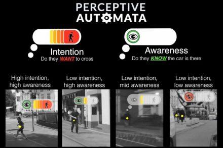Perceptive Automata