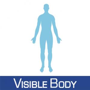 visiblebody