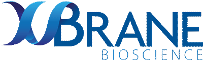 xbrane-logo
