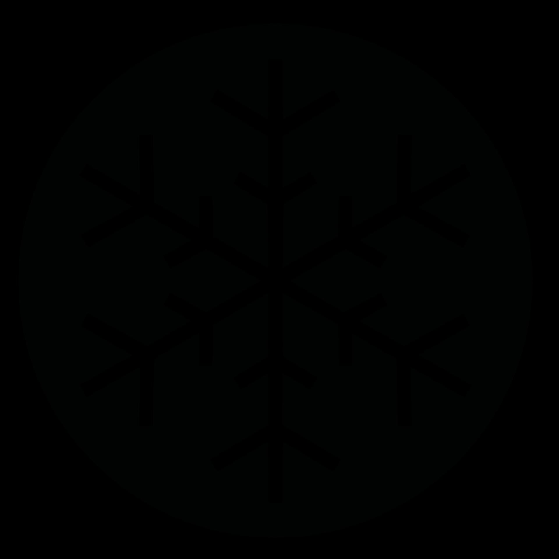 Snowflake_black