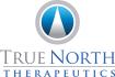 TrueNorth_Logo