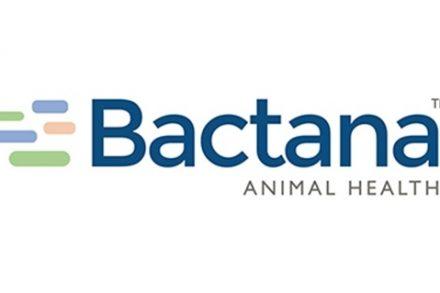 bactana