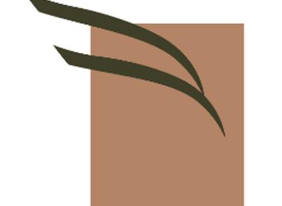 grayhawkcapital
