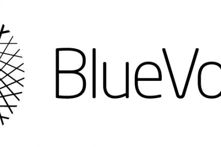 BlueVoyant_Logo