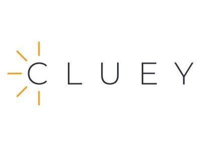 cluey