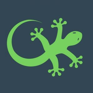 geckoengage