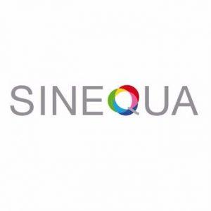 sinequa