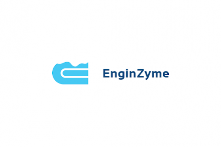 enginzyme