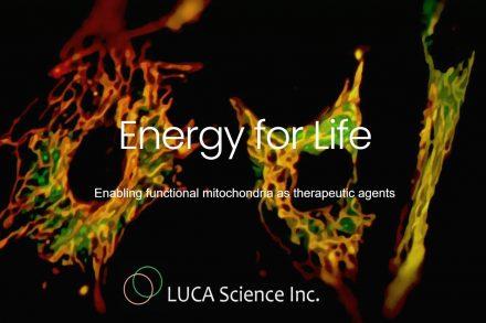 luca-science