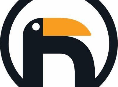 bold-penguin