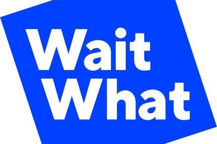 WaitWhat Logo