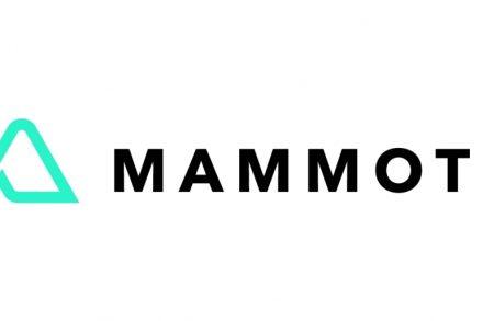 mammoth-vc