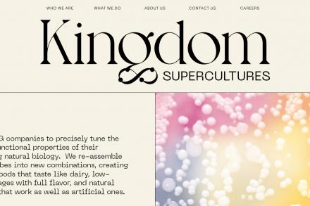 Kingdom Supercultures